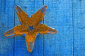 Yellow starfish on blue decking background — Stock Photo