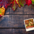 Colorful wet autumn leaves arranged on old wooden table — Stock Photo #30085643