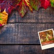 Colorful wet autumn leaves arranged on old wooden table — Stock Photo