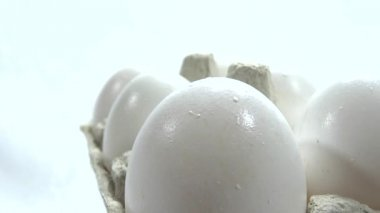 Very close up eggs presentation — Stock Video