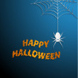 Halloween spider web with blue background — Stockvectorbeeld