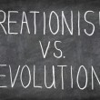Royalty-Free Stock Photo: Creationism vs. Evolution