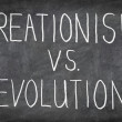 Creationism vs. Evolution - Stock Photo