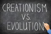 Criacionismo versus evolução — Foto Stock