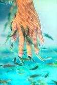 Manicure fish spa — Stock Photo