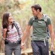 Stock Photo: Couple hiking happy