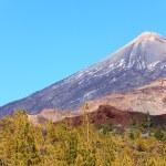 Tenerife, Teide landscape — Stock Photo