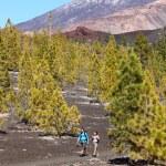Hiking landscape Teide, Tenerife — Stock Photo