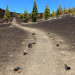 Path for hiking, Tenerife - Stock Photo