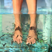 Fish Spa Skin Treatment — Stock Photo