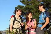 Grupp vänner vandring — Stockfoto