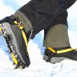Crampons - Stock Photo
