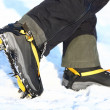 Stock Photo: Crampons