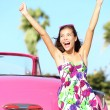 Summer vacation car road trip - Stock Photo