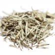 Tea - white tea leaves — Stock Photo