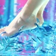 Pedicure vis spa - garra rufa — Stockfoto
