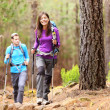 Foto Stock: Hikers in forest