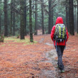 Hiking in rain - Stock Photo