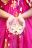 カップ状の手でハワイの花 — ストック写真