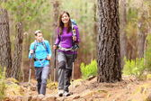 Hikers in forest — Foto Stock