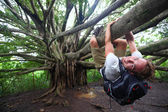 Banyan tree and hiker, Maui, Hawaii — Stock Photo