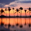 Paradise beach sunset tropical palm trees — Foto de Stock