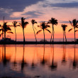 Paradise beach sunset tropical palm trees — Stock Photo