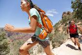 Trail runner cross country running Grand Canyon — Stock Photo