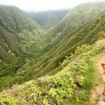 Hiking on Hawaii, Waihee ridge trail, Maui — Stock Photo #27487531