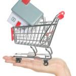 dům a domov pro prodej v nákupní košík koncept — Stock fotografie