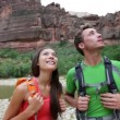 Stock Video: Hikers hiking enjoying view in Zion National park