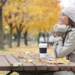 Fall woman sitting in autumn park smiling happy — Stock Video #32379087
