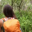 Hiking woman trekking in rainforest — Stock Video