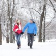 Couple walking in winter forest — Stock fotografie
