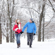 Couple walking in winter forest — Stockfoto