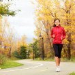 Fall running - woman jogging in autumn — Stock Photo #34123557