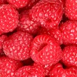 Raspberries - berry background texture — Foto de Stock