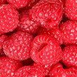Raspberries - berry background texture — Stock Photo