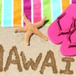 Hawaii beach travel — Foto Stock