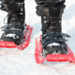 Snowshoes — Stock Photo