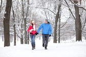 Couple walking in winter forest — Stock Photo