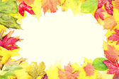 Leaves fall frame — Stockfoto