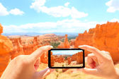 Smartphone taking photo of Bryce Canyon nature — Stock Photo