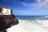 Tenerife - puerto de la cruz — Foto Stock