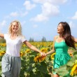 Happy summer girls laughing fun in sunflower field — Stock Photo