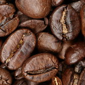 Texture background coffee beans closeup — Stock Photo