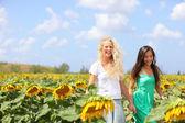 Dziewczyny, trzymając się za ręce w słonecznikowe pole — Zdjęcie stockowe
