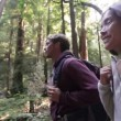 Couple hiking in forest Redwoods San Francisco — Stock Video