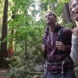 Hiking couple in forest Redwoods San Francisco — Stock Video