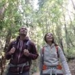 Hiking people in forest Redwoods San Francisco — Stock Video